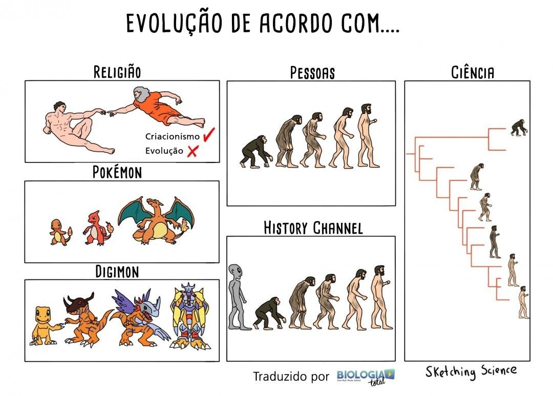 A Evolucao Das Especies Sob Diferentes Perspectivas