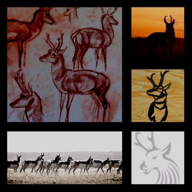 51 Deadliest Predator Tattoo Designs Ideas For Men: Ideas For A Pronghorn Antelope Tattoo.. They're Animals