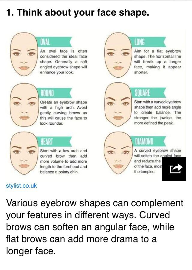 Eyebrow diagrams that will explain everything to you eyebrow eyebrow diagrams that will explain everything to you ccuart Gallery