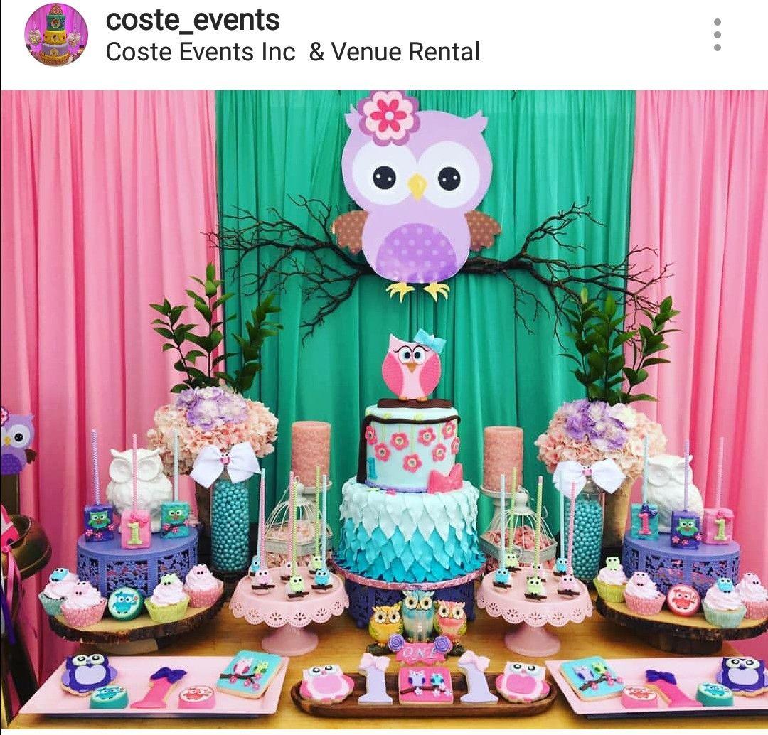 Owl Theme Birthday Party Dessert Table And Decor