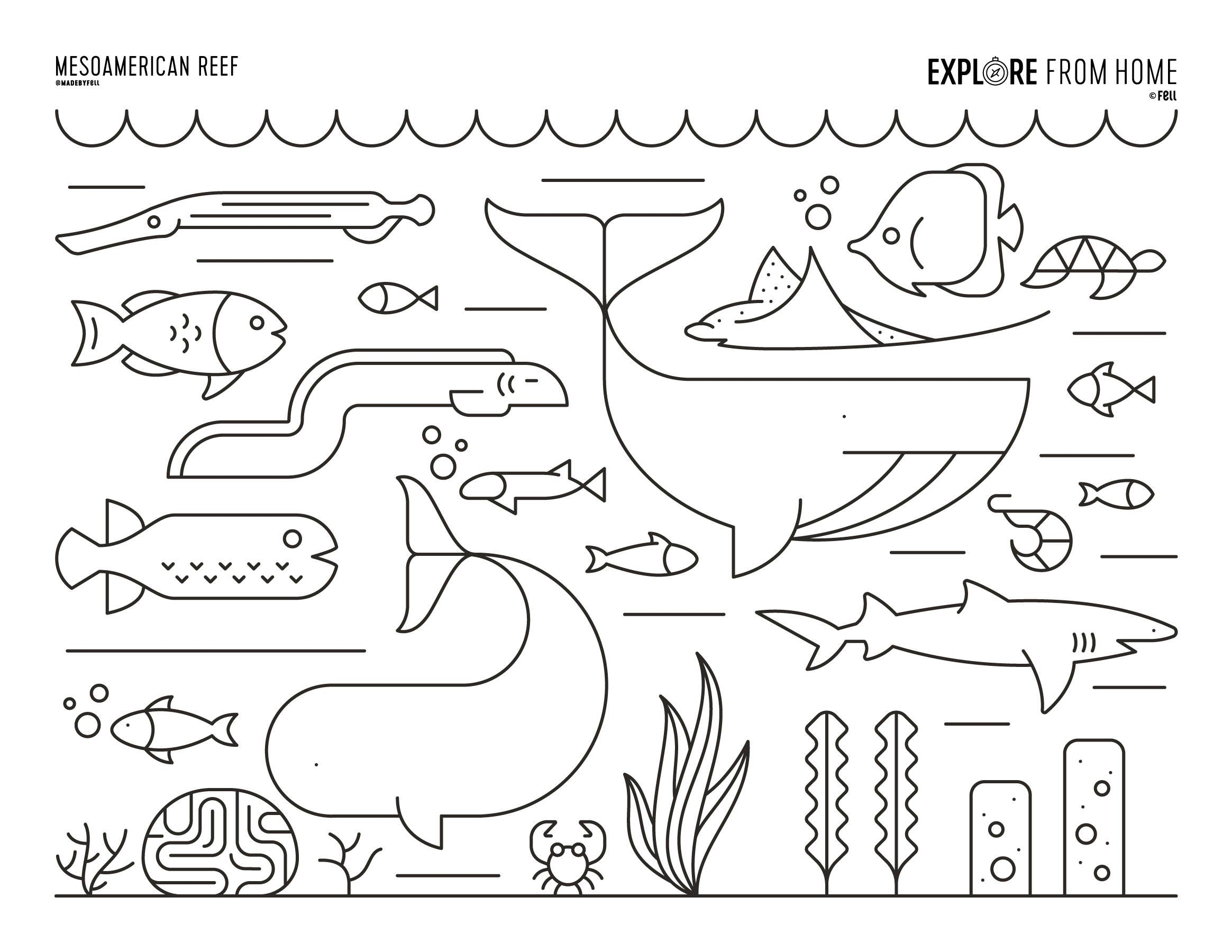 Biomes Mesoamerican Reef Coloring Page Fruit Coloring Pages Coloring Pages Free Printable Coloring Pages [ 1800 x 2329 Pixel ]
