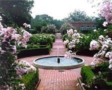 ba0d672ab38bc40a3175bc3bb0daa6c6 - City Park Botanical Gardens Plant Sale