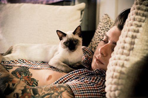Deus Est Mortuus Logica Obtinet Cat Tat Men With Cats Cat Lovers
