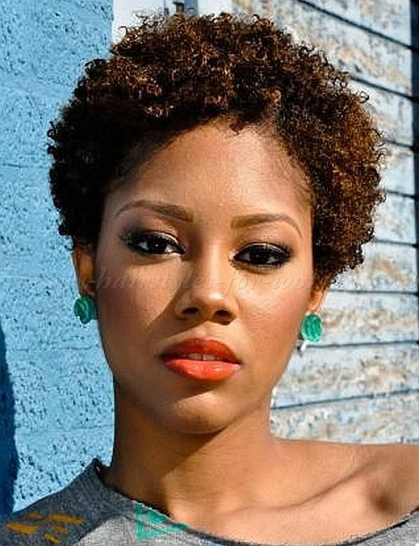 Short Natural Curly Hairstyles Cool Short Natural Hairstyles For Black Women  Hairstyles  Naturally
