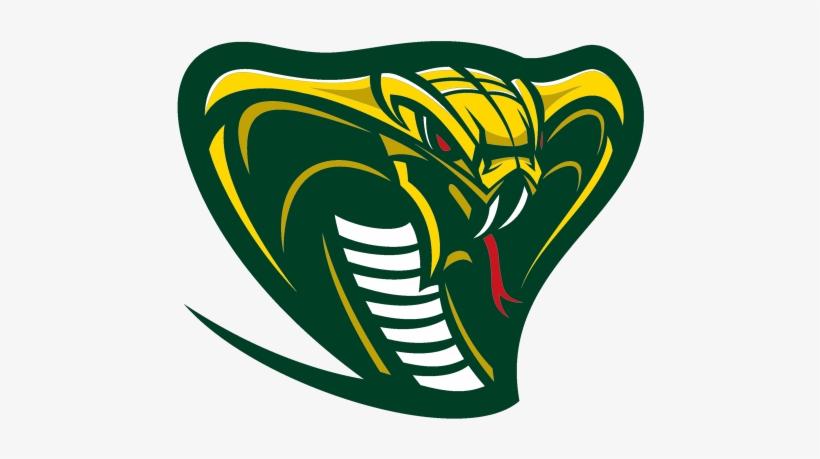 Cobras Sports Logo Google Search