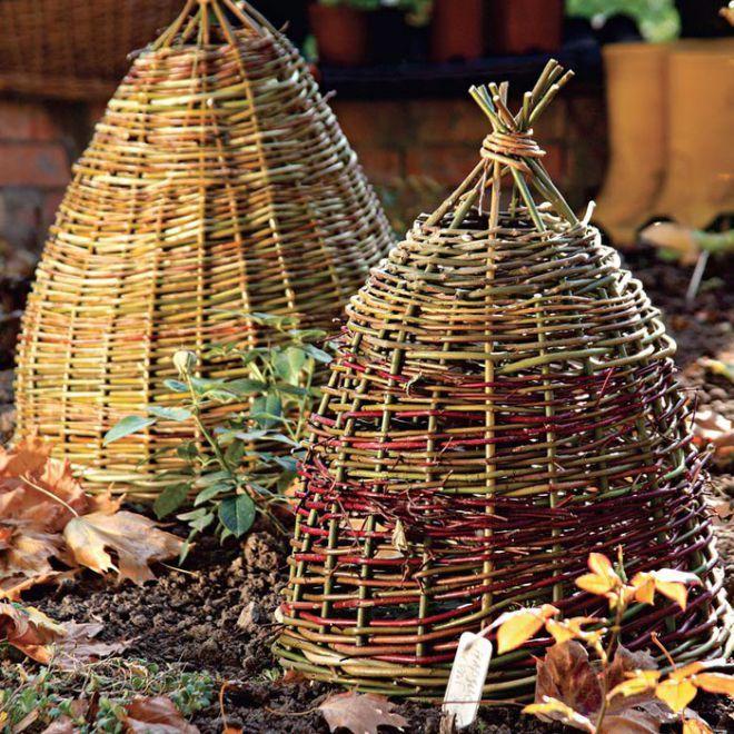 Корзина как зимнее укрытие для растений. Мастер-класс   плетение из лозы перголы   Постила