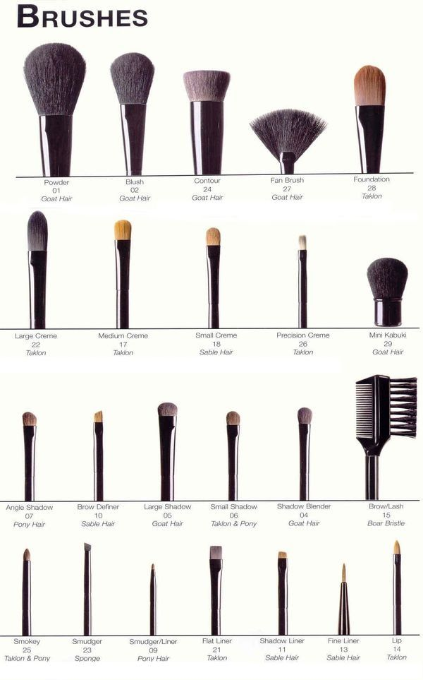 A Guide Of Makeup Brushes And Their Uses Incredibly Useful For