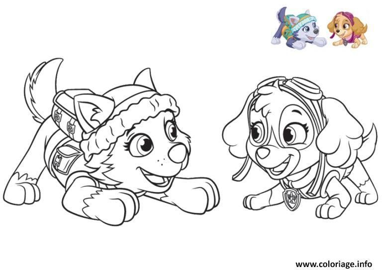 Coloriage Pat Patrouille Everest At Supercoloriage Paw Patrol Coloring Dog Coloring Book Paw Patrol Coloring Pages