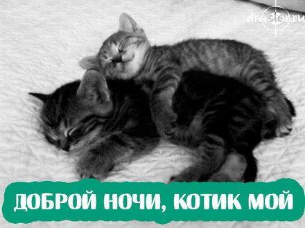 Романтическая картинка спокойной ночи любимому парню ...