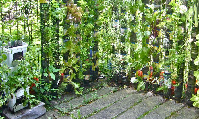 Huerto En Casa Con Material Reciclado Buscar Con Google Urban Garden Vertical Vegetable Gardens Vertical Container Gardening
