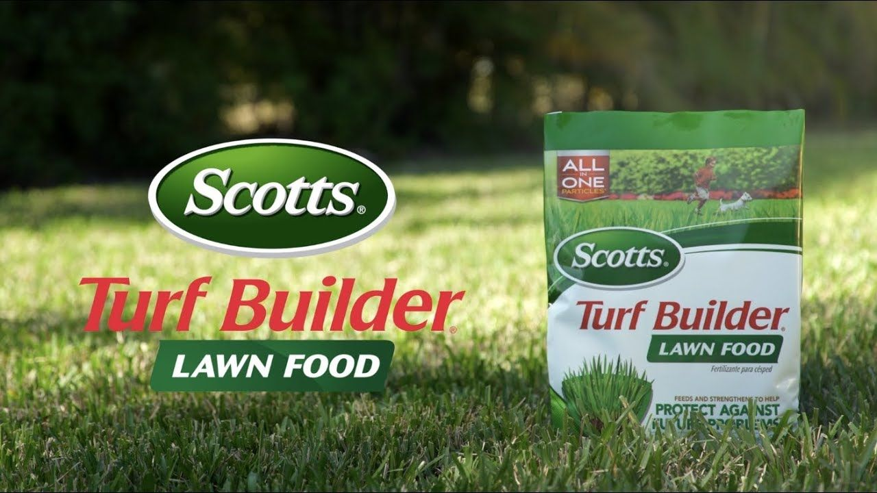 scotts turf builder summer lawn food amazon