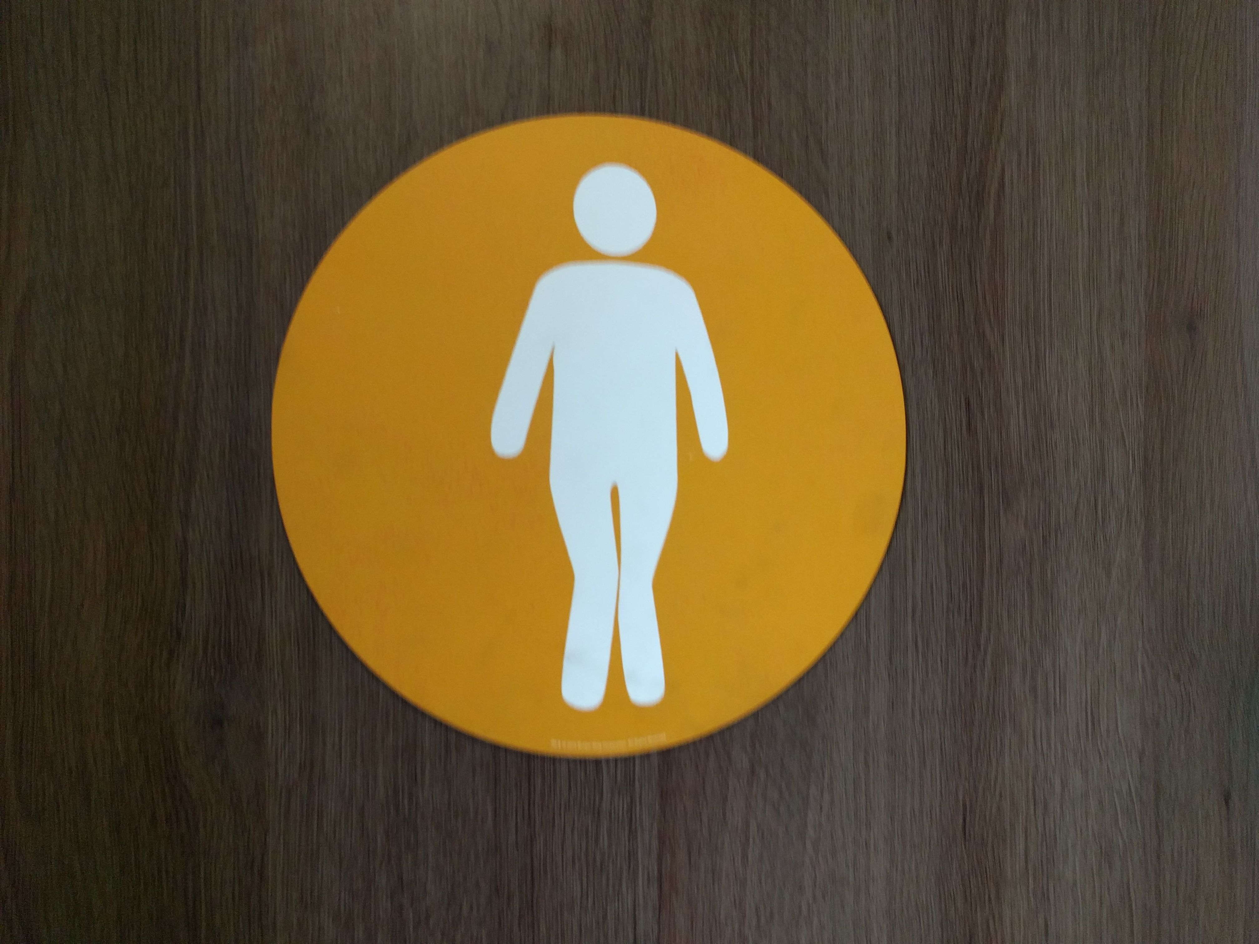squatting international bathroom women for using s sitting sign uk toilet the a vs in guide students