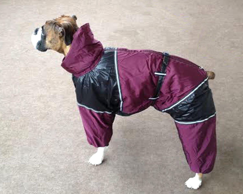 Boxer Dog Winter Coat - Goldenacresdogs.com