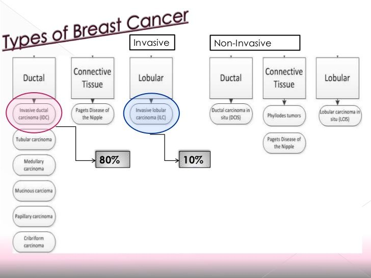 breast-cancer-molecular-basis-of-her2-disease-19-728.jpg (728×546)