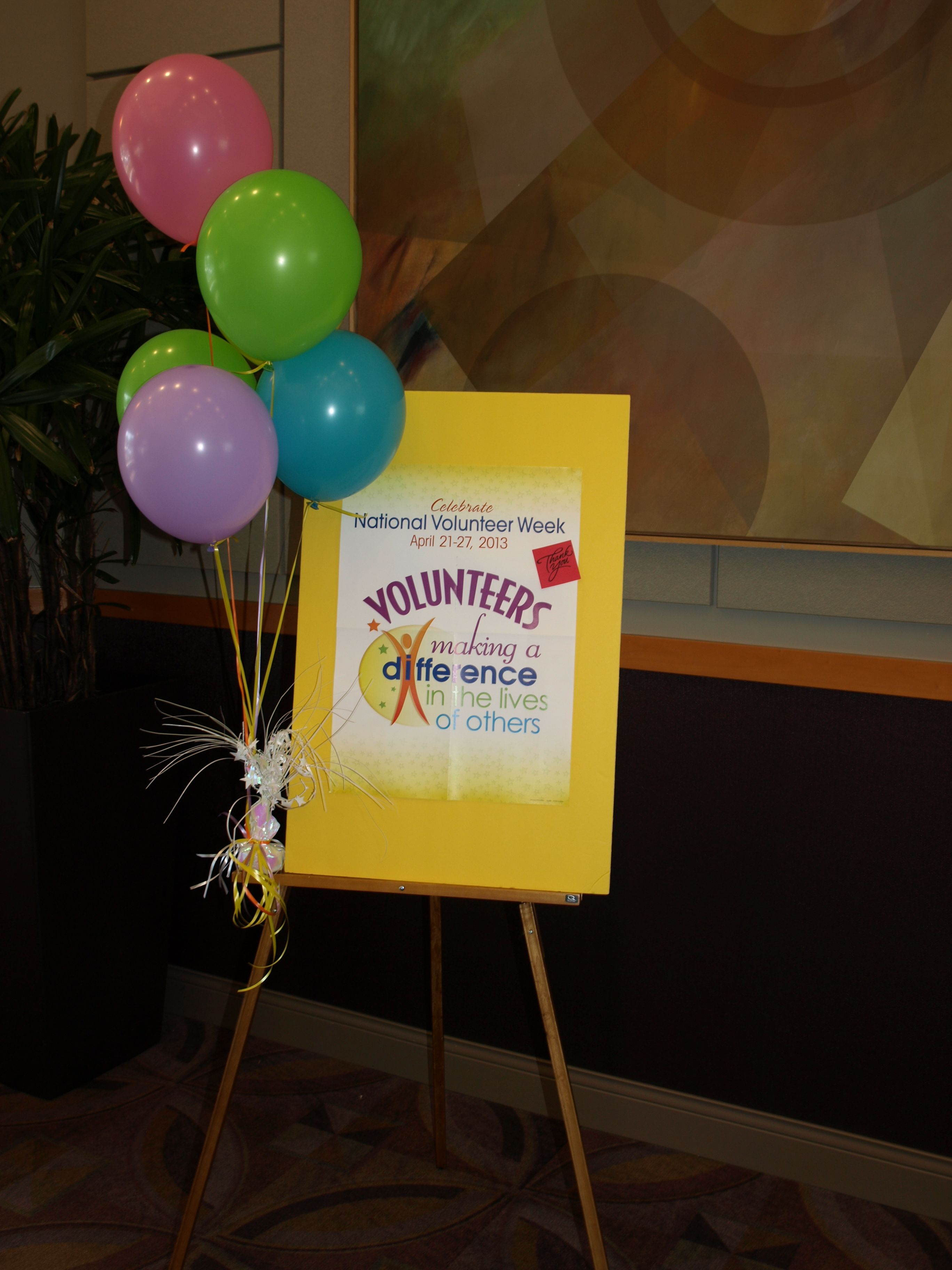 2013 'Volunteer Appreciation' celebration! | Photo of the ...