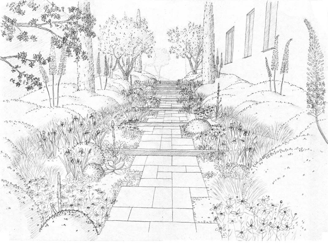 Garden drawing pictures - Landscape Drawings