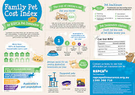 Pin by Comfort for Critters on Useful Pet Information