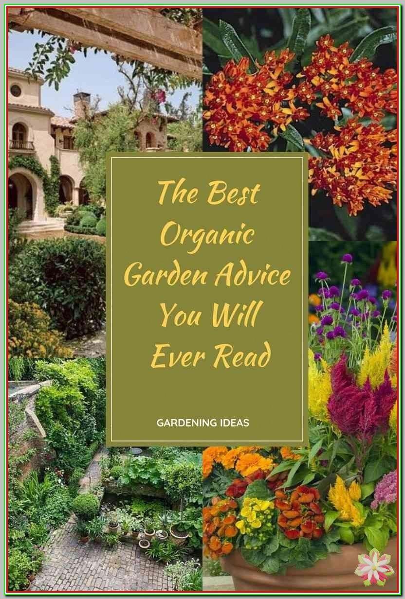 ba1205265ce10017b647fd51e2da3fd5 - Is Castor Oil Safe For Vegetable Gardens
