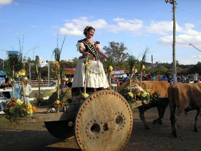 carro de bois | Festival-Carros-de-Bois-e-desfiles-2006-064 | Prefeitura Municipal de ...