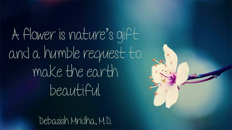 A flower is nature's gift and a humble request to make the ...