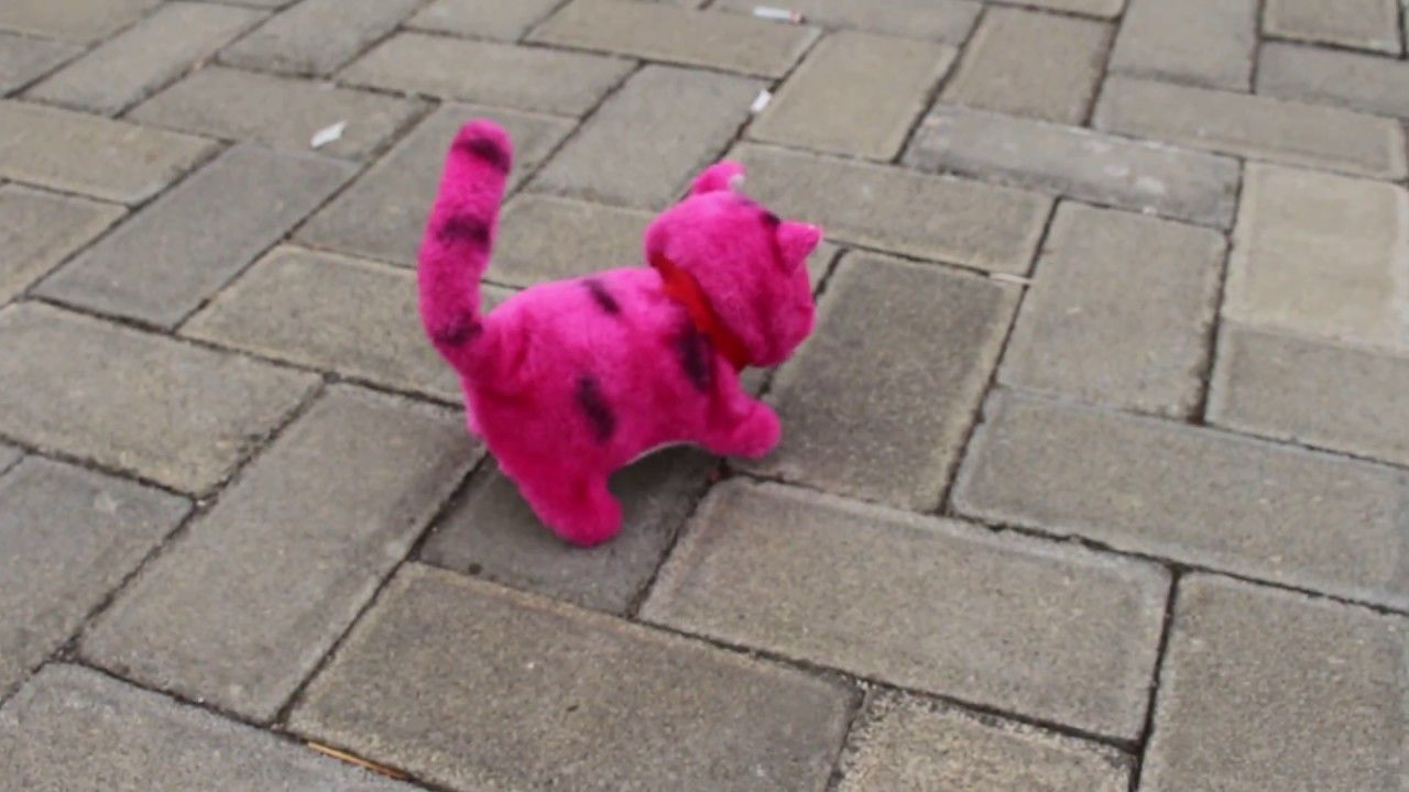 Mainan Hewan Bisa Jalan Ada Suara Kucing Dan Kerbau Hewan Kucing Kerbau