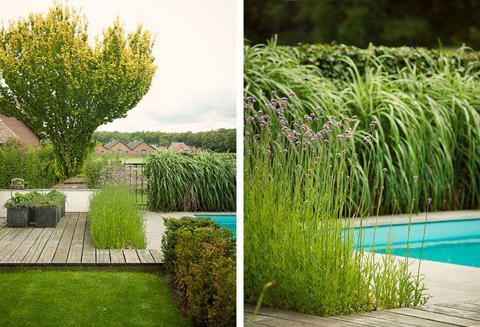 Welkom bij buytengewoon tuinen moderne stadstuinen stijlvolle
