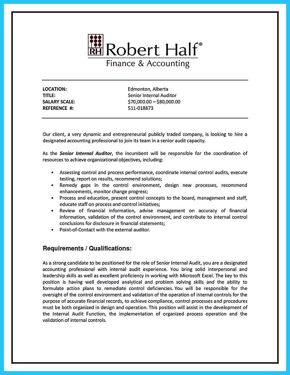 it auditor resume summary