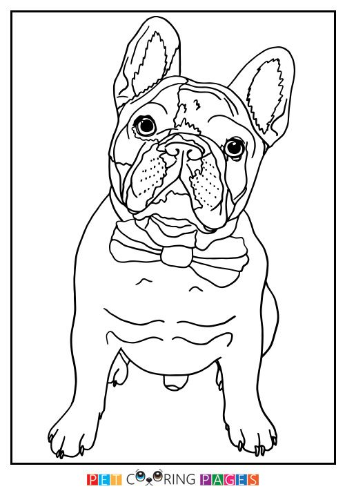 French Bulldog Coloring Page Manny French Bulldog Painting