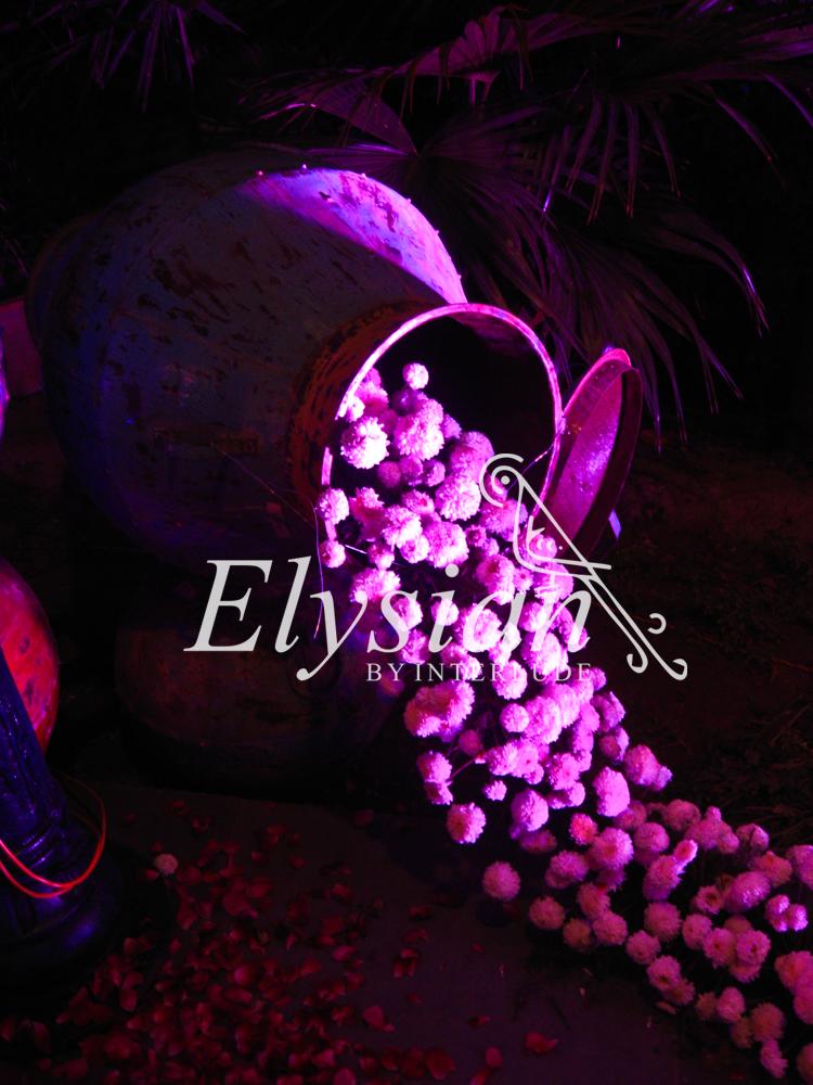 Elysian Weddings by Interlude media