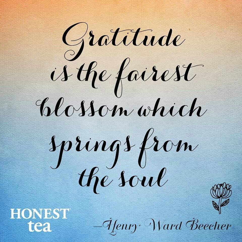 Quotes About Thanks And Appreciation: Appreciation Sayings And Quotes. QuotesGram