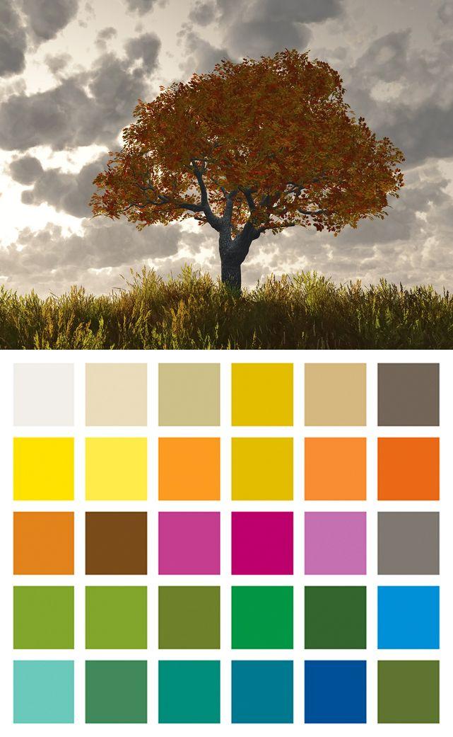les couleurs la m thode saisonni re couleurs. Black Bedroom Furniture Sets. Home Design Ideas