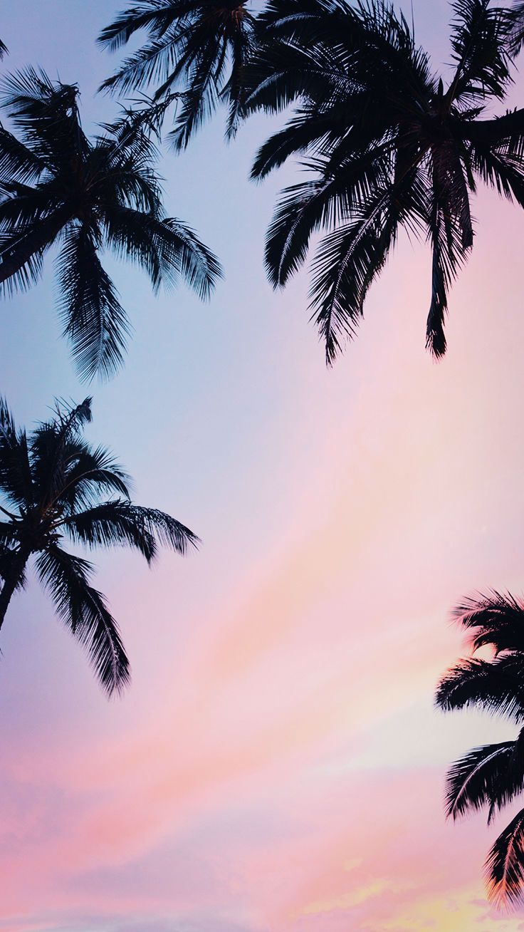 9 Summer Sunset iPhone Wallpapers To Kill That Winter Depression