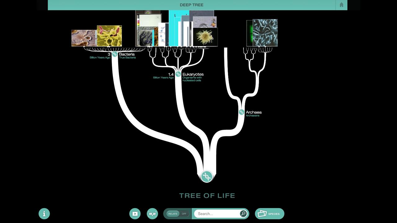 NOVA Evolution Lab Game PBS LearningMedia Teaching