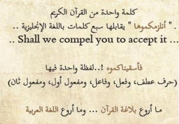 ما أروع اللغة العربية ما أجمل لغة القرآن Beautiful Arabic Words Arabic Words Funny Quotes