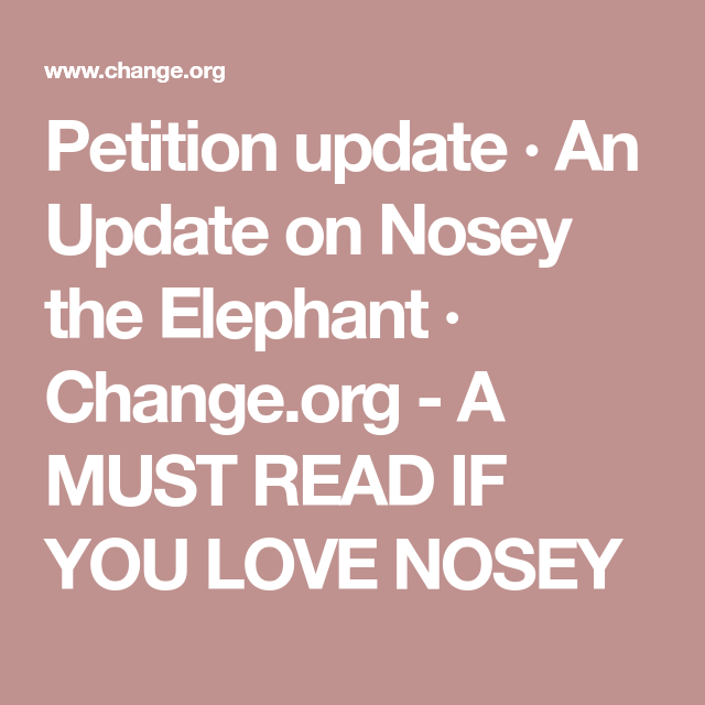 Petition update · An Update on Nosey the Elephant · Change.org -  A MUST READ IF YOU LOVE NOSEY