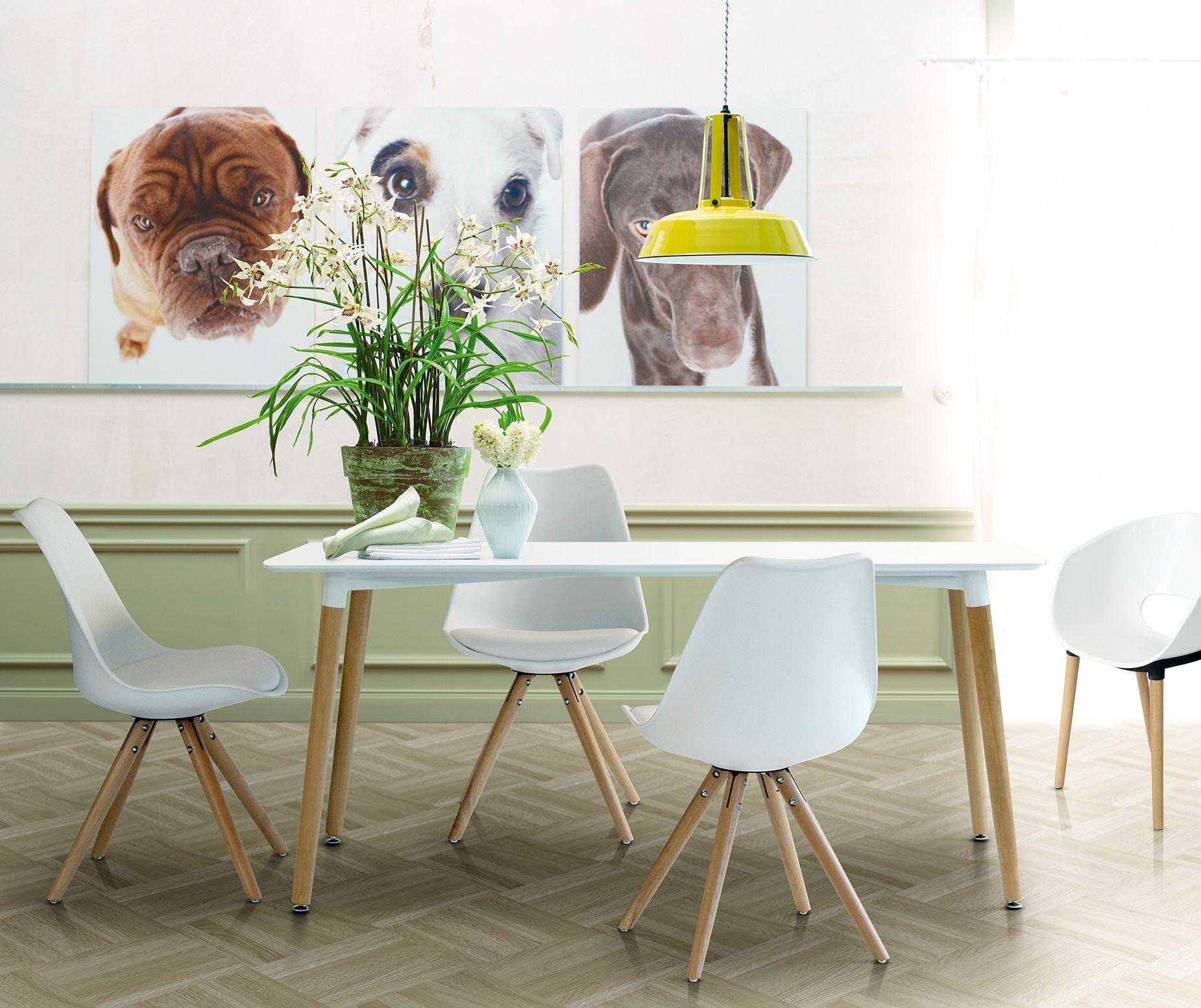 Flotter Küchentisch in purem Weiß | Tische & Stühle | Pinterest | Plato