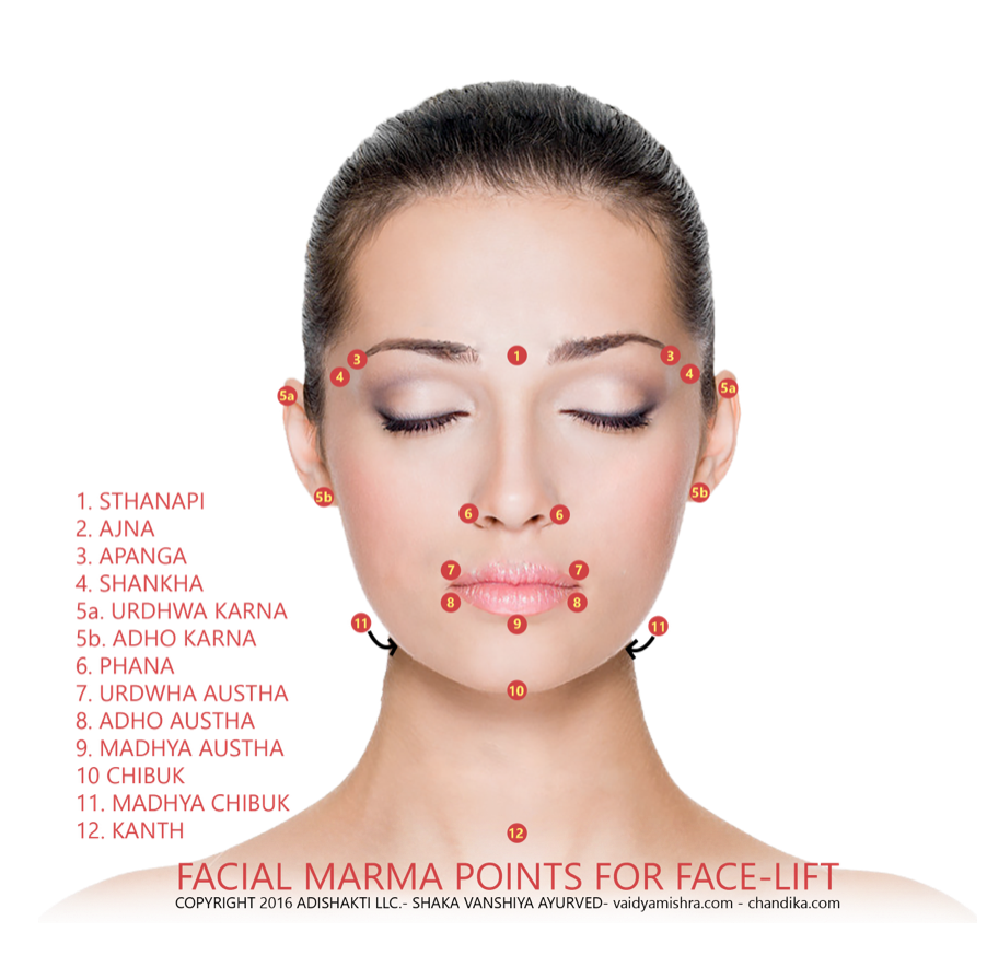 Marma Points Ayurveda Facial Google Search Wellbeing