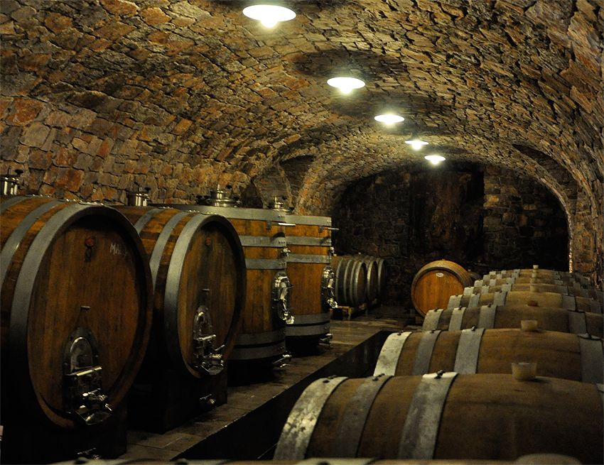 Another Old Wine Cellar This One Is In Germany A Discovery Of