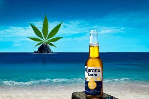 La Corona se met à la marijuana...