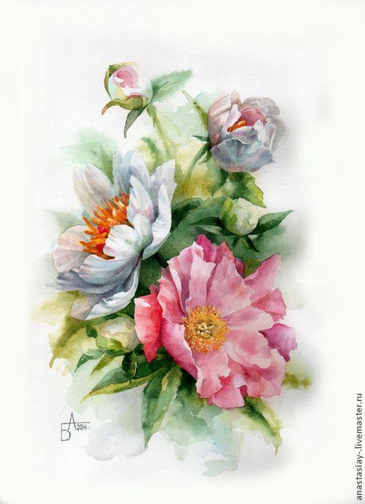Peonies.  watercolor Besedina Anastasia