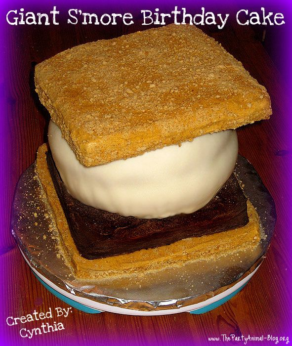 Giant Smores Birthday Cake