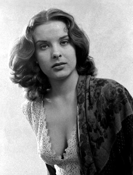 Jean Peters, actress (Pickup on South Street) | Jean peters, Classic  actresses, Classic hollywood
