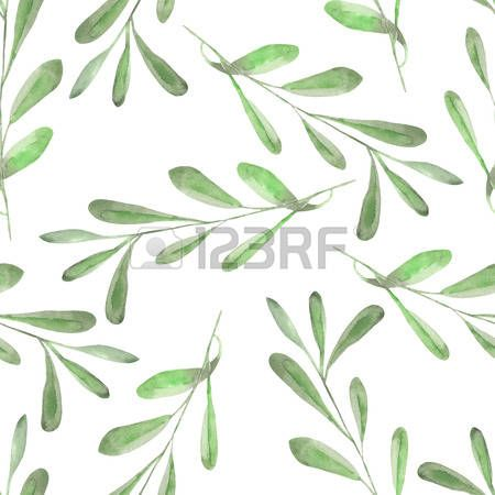 Branche D Olivier Seamless Floral Pattern With The Watercolor