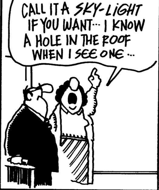 Skylight Vs Hole In Roof Humor Real Estate Humor Realtor Humor Real Estate Quotes