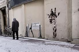 giraffe in the street