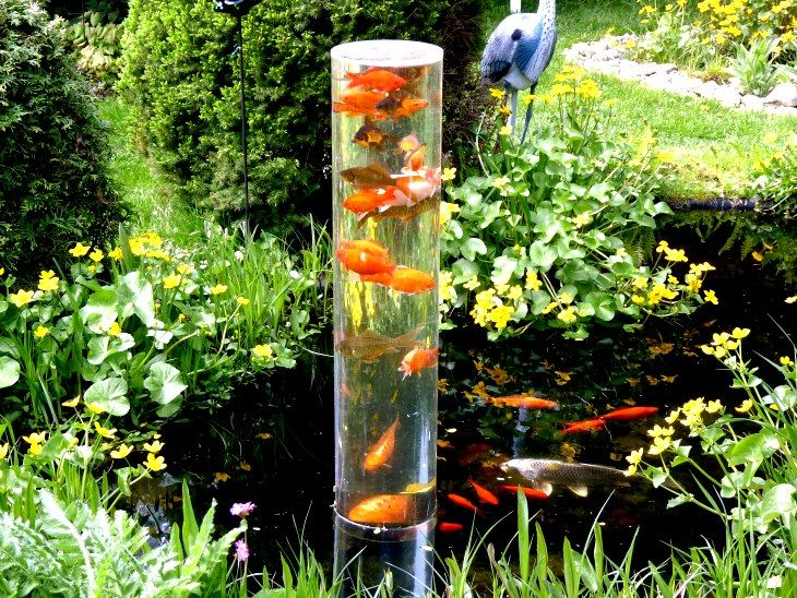 Mirador para peces estanques pinterest estanques for Fuentes para peces