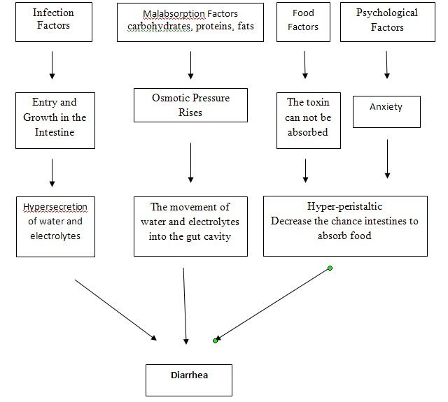 Pathophysiology Of Diarrhea  Nursing Assessment Nursing Care Plan
