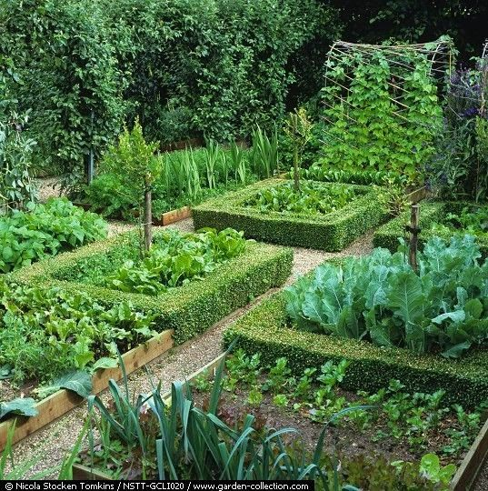 Using The Potager Design Ideals Even The Smallest Plot Of