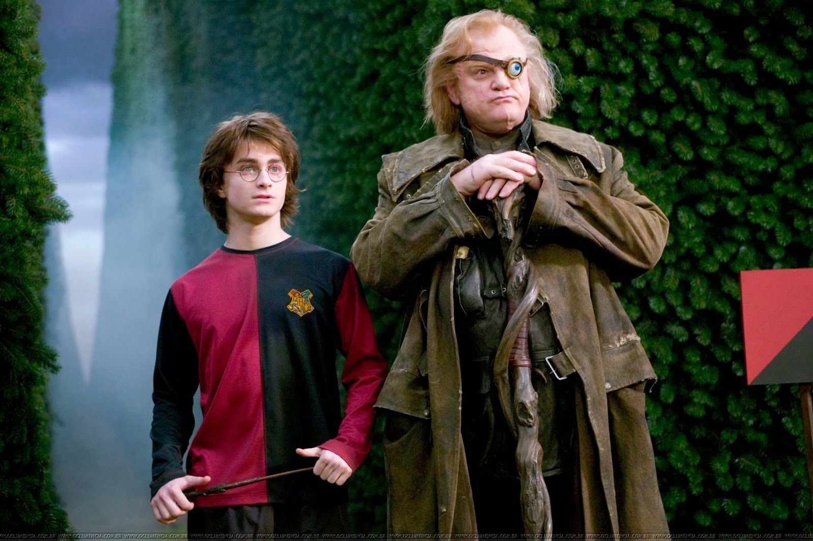Harry Potter And The Goblet Of Fire I Wish This Was A Better Adaptation Still Love It Though Moody Harry Potter Harry Potter Goblet Harry Potter Movies