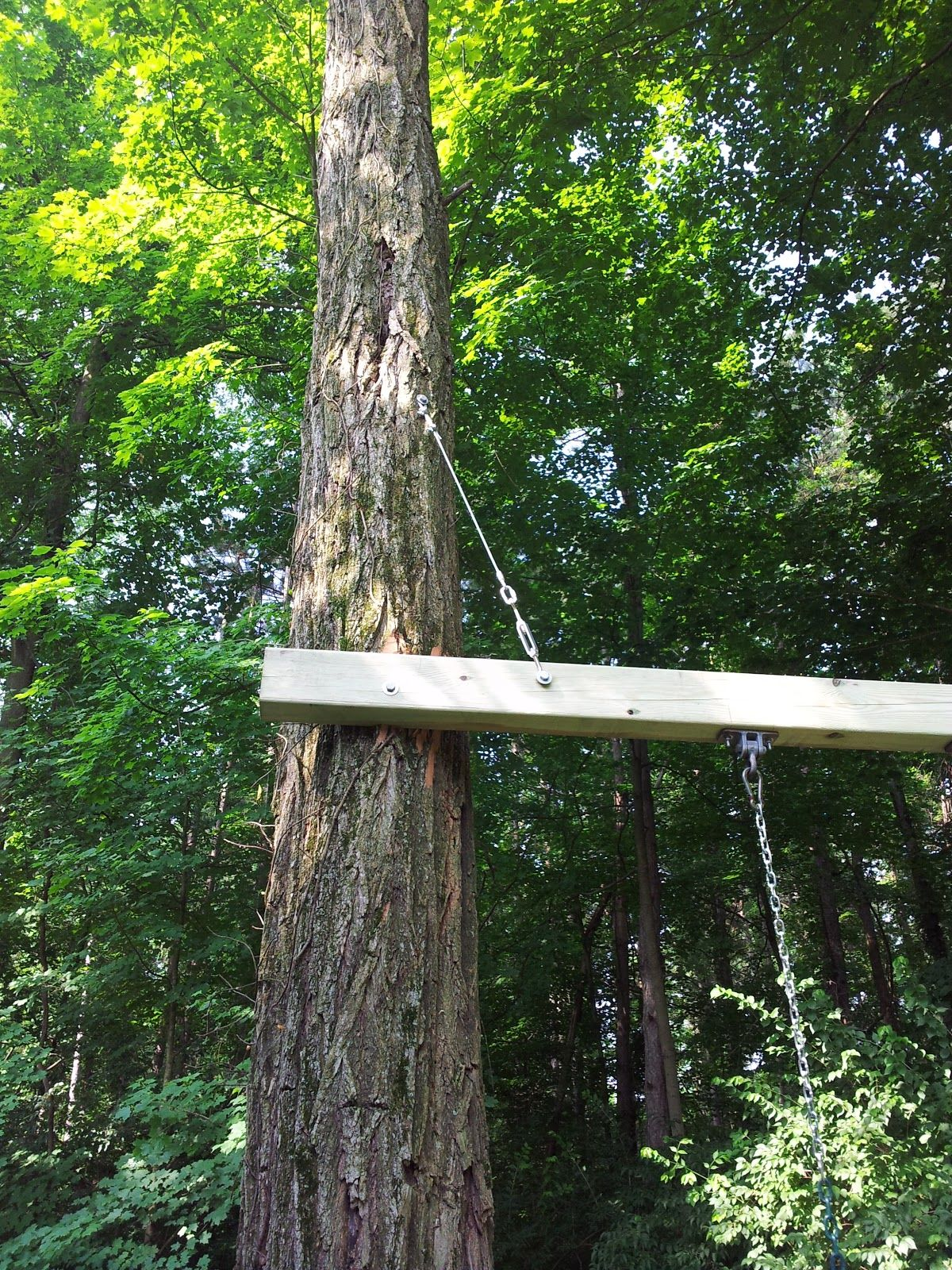 How to build a tree swing - Chad S Workshop Swing Between 2 Trees
